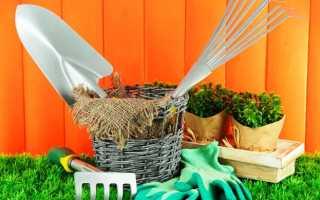 Весенние работы в саду весной, что делать на участке в марте и апреле