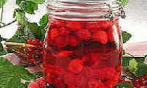 Варенье из малины на зиму густое, основные рецепты