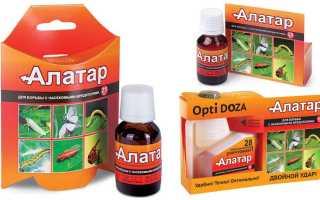 Алатар: инструкция по применению для борьбы с насекомыми, обработка комнатных растений и где купить?