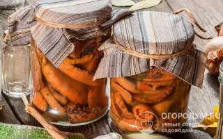 Засолка рыжиков горячим способом, очень вкусный рецепт на зиму