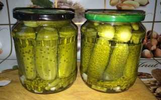 Вкусные рецепты маринованных огурцов по-волгоградски на зиму в домашних условиях и хранение