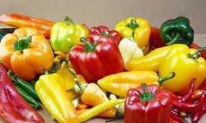 Как выбрать семена и когда сеять перец на рассаду?