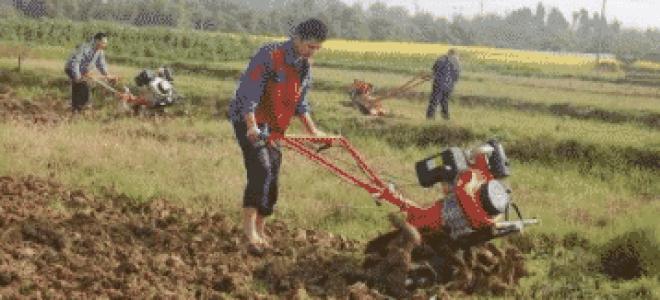 Как правильно копать землю мотоблоком (видео)