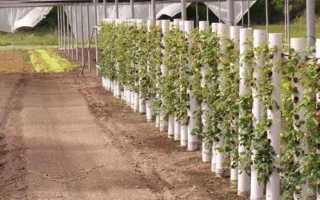 Вертикальные грядки для клубники – красиво и практично