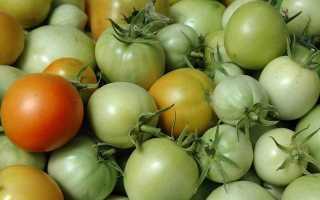 Как дома хранить зеленые помидоры