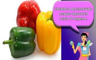 Как подольше сохранить болгарский перец