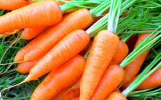Заготовки на зиму из моркови: простые и полезные рецепты