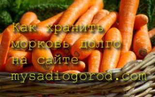 Где и как хранить морковь зимой