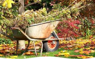 6 компонентов правильной подготовки садовых кадочных к зиме