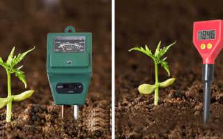 Измеряем кислотность почвы: как это делается и для чего нужно