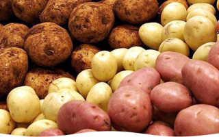 Как сажать клубни картофеля