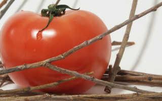 Как подкормить помидоры дрожжами в теплице: рецепты раствора для томатов от фитофторы и других болезней, отзывы дачников о таком удобрении