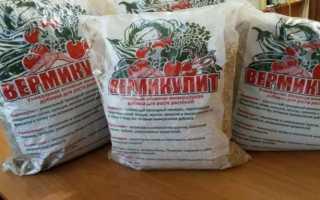 Как применять вермикулит для комнатных растений и рассады