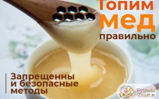Как растопить мёд, чтобы он не потерял полезные свойства