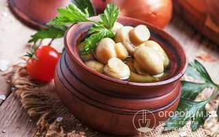 Как вкусно посолить грибы в домашних условиях: рецепт холодной и горячей засолки